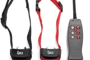 Epica Remote Dog Training Collar