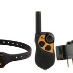 PetSafe Remote Spray Trainer